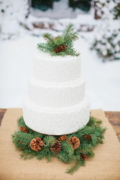 Winter Wedding Cake with Wintergreen Pine & Pinecone details via Wedding Chicks