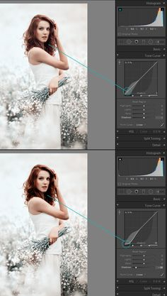 In this tutorial, we will take a look at the components of the Tone Curve panel in Lightroom | A Pretty Presets for Lightroom Tutorial