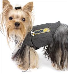 Thundershirt Anxiety Treatment for Dogs – GW LITTLE