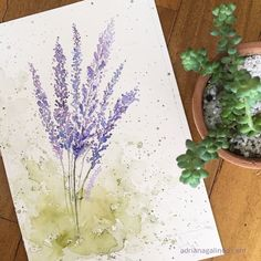 Lavender, watercolor / Lavanda, aquarela / flor, flower, casamento, wedding, convite, invitation, illustration, ilustracao, pintura, painting, natureza, nature, copyright by Adriana Galindo #watercolorarts