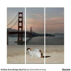 Liven up the walls of your home or office with Golden Gate Bridge wall art from Zazzle. Check out our great posters, wall decals, photo prints, & wood wall art. Wall Décor, Wood Wall Art, Wall Art Decor, Wall Decals, Triptych Wall Art, Golden Gate Bridge, Illusions, Cats, Prints