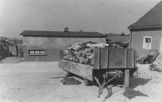Mauthausen, Austria, Bodies on a cart, May 1945,.Mauthausen was liberated by American soldiers from the 65th Infantry Division.
