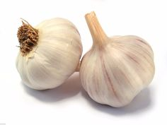 Garlic blended with water keeps mosquitos away!
