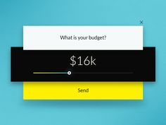 What is your budget? by Andrei Velicu