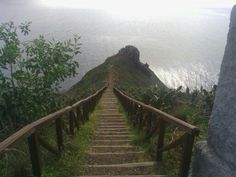 Canico,Madeira Paths, Portugal, Stairs, Travel, Home Decor, Madeira, Ladders, Voyage, Homemade Home Decor