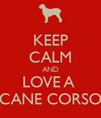 Keep Calm and Love a Cane Corso!