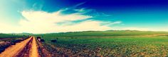 Mongolia :D