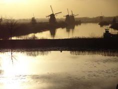 Lovely (naturally sepia toned) pic of windmills taken by Suze Weinberg in/around Amsterdam, mid Dec/13.