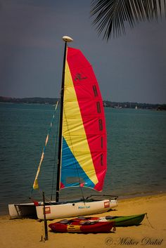Sailing Boat: Been there done that