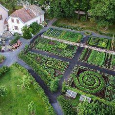 Herb Garden Design, Garden Design Plans, Vegetable Garden Design, Garden Types, Backyard Vegetable Gardens, Potager Garden, Herbs Garden, Walkway Garden, Garden Shrubs