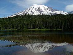 Mount Rainier, Washington  Photo by Carolan Ivey.