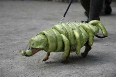 Halloween parade, dog as alien insect.