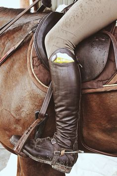 Animo breeches, interesting detail on brown boots, matching stirrups.