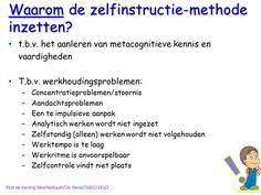 Waarom de Meichenbaum Beren methode inzetten. Uit de training Meichenbaum/De Beren/StiBCO/EvD