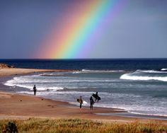 Surf & Rainbows
