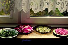 Moje Małe Czarowanie: Suszymy zioła, kwiaty, liście