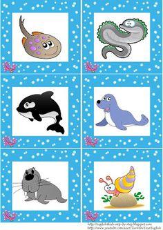 Tengeri Állatok kártyákat tanulás esl