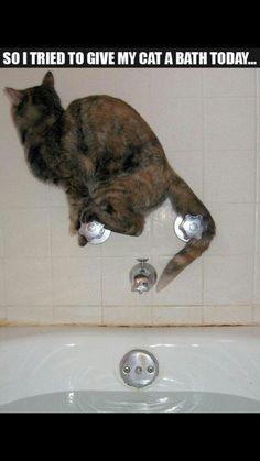 No bath for me