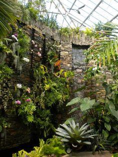 Daniel Stowe Botanical Garden Pictures