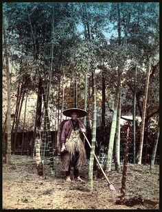 THE BAMBOO SHOOT HUNTER OF OLD JAPAN -- Digging Up Tasty Morsels from the Bamboo Forest by Okinawa Soba, via Flickr