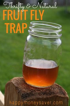 Thrifty and all natural Fruit Fly trap using vinegar and dish soap.  happymoneysaver.com