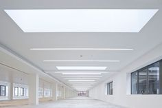 timber and barrisol ceilings - Google Search