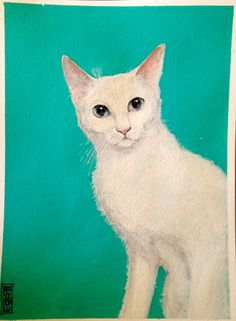White cat in acrilic painting, by Francesca Lù 🌹❤️
