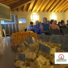 Asiago PDO tasting @ Conco (Vicenza) - Italy #AsiagoCheese #formaggioasiago  This is the village that Grandpa Yody's family is from.