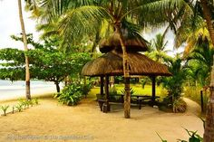 Hidden away on Panglao's most beautiful sandy beach, The Ananyana Beach Resort has traditional architectural styles blend with the coconut palms and trees in a little haven of peace and tranquillity. # http://thebeachfrontclub.com/beach-hotel/asia/philippines/panglao-island/doljo-beach/the-ananyana-beach-resort/