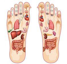 Health Advice, Health And Wellness, Health Fitness, Reflexology Massage, Foot Massage, How To Massage Yourself, Acupressure Treatment, Massage Benefits, Health Benefits