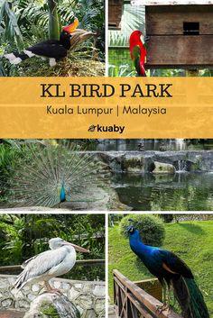 KL Bird Park in Kuala Lumpur, Malaysia