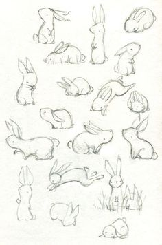 40 free easy animal sketch drawing information ideas 40 beautiful and realistic animal sketches for your inspiration Cute Drawings, Drawing Sketches, Drawing Ideas, Bunny Sketches, Drawing Tips, Sketching, Drawing Faces, Animal Sketches Easy, Sketch Ideas