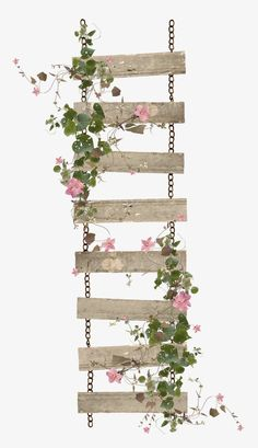 Foliage ladder PNG and Clipart Vintage Flowers Wallpaper, Flower Phone Wallpaper, Iphone Wallpaper, Flower Backgrounds, Wallpaper Backgrounds, Watercolor Flowers, Watercolor Art, Vintage Clipart, Flower Frame