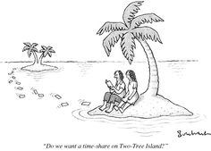 Time Share July 22nd, 2013 : The New Yorker