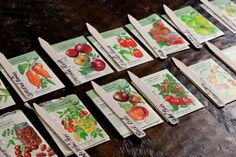 """How to Grow Tomatoes From Seed -Check out my """"Hobby Farming"""" board for more vegetable related pins... for all you hopeful for this years crop!  Also, check out Mavis' blog she definitely motivates me to get out there and plant something!"""