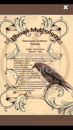 Hoodoo Spells, Magick, Witchcraft, Animal Meanings, Animal Symbolism, Magic Book, Magic Spells, Animal Spirit Guides, Spirit Animal