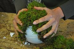 Making a Christmas piece: festive bulbs of moss - Christmaholic.nl - Making a Christmas piece: festive bulbs of moss – Christmaholic. Tree Decorations, Christmas Decorations, Copper Wire Lights, Starry Lights, Diy Home Decor Projects, Holiday Tree, Christmas Home, Herbs, Wreaths