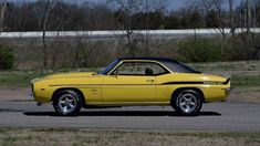 Muscle Cars, GSD,s. Protect the wolves, horses. While it is true that Muscle Car is 1969 Yenko Camaro, Chevrolet Camaro, National Car, Chevy Muscle Cars, American Racing, Pony Car, Pontiac Gto, Buick, Mopar