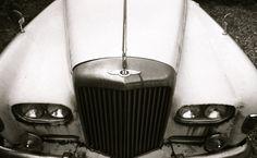 Tuesday Weld's / Bentley 2007