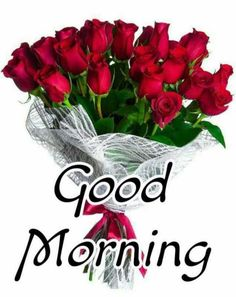 Good Morning Wishes Gif, Good Morning Friends Images, Good Morning Beautiful Pictures, Good Morning Images Flowers, Good Morning Happy Sunday, Good Morning Roses, Good Night Love Images, Good Morning Cards, Good Morning Greetings