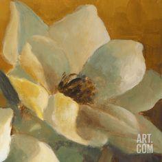 Magnolias Aglow at Sunset II (detail) Art Print by Lanie Loreth at Art.com