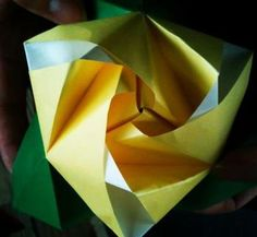 Yellow paper Rose