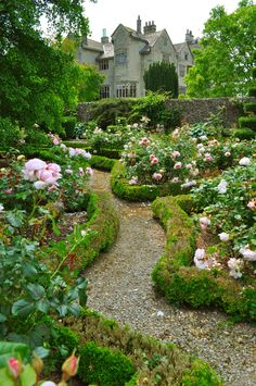 I like the low hedge framing the beds & the walk. (The Artful Gardener)