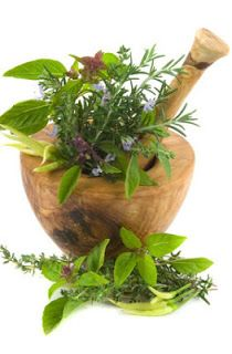 Herbal Tea Trea Salve for Burns