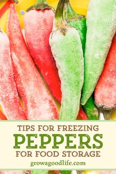Whether you have hot chiles or sweet bells, you can preserve peppers by freezing. Gather your peppers, cutting board, baking sheets, freezer bags, and follow these steps to preserve peppers by freezing. Freezing Vegetables, Freezing Fruit, Fruits And Veggies, Fruit And Vegetable Storage, Vegetable Dishes, Freezer Cooking, No Cook Meals, Canning Recipes, Canning Tips