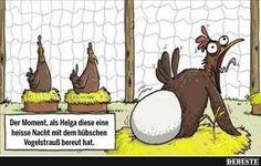 Der Moment, als Helga diese eine heisse.. | Lustige Bilder, Sprüche, Witze, echt lustig