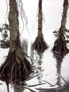 DIY swamp trees