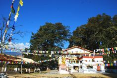 Urgelling Gompa is the birth place of the Dalai Lama. Located from the main town at the foothill, the Urgelling Monastery is a modest but colorful gompa hidden by old trees. Arunachal Pradesh, Old Trees, India Tour, Places Of Interest, Dalai Lama, Temples, Maine, Mystery, Dolores Park