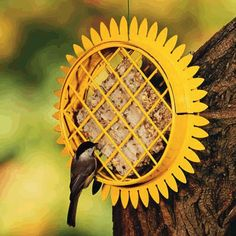 Attract woodpeckers and nuthatches to your Sunflower Suet Bird Feeder.