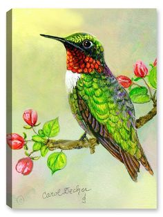 Hummingbird and Apple Tree - Canvas Art Plus Hummingbird Drawing, Watercolor Hummingbird, Watercolor Bird, Hummingbird Food, Hummingbird Tatoos, Exotic Birds, Colorful Birds, Quilled Creations, Apple Art